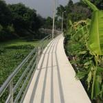 運河の小道の改修工事