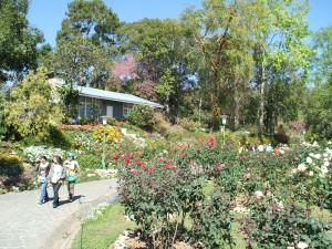 隣接する植物園