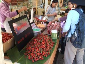 メオ・トライバル・ビレッジで販売されている、山岳民族の人たちが栽培したイチゴ