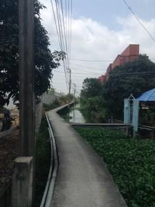 運河にそった小路