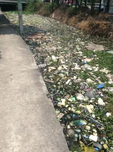 運河に溜まったゴミ