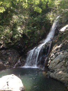 沖縄県国頭村の比地大滝