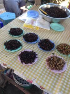 村の市で販売されている食用昆虫