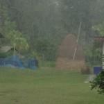 タイ東北地方(イサーン)の雨季