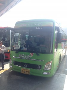 この緑のバスがツアーバスです。
