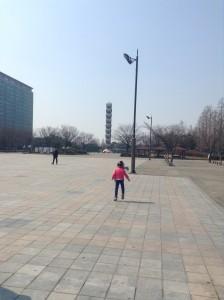 中心にあるタワーの左側の気が生えている場所の前辺りに、掲示板が幾つか見られる所にありました。