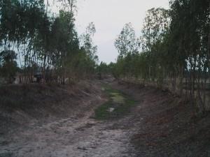 乾季の用水路