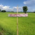 「草刈り禁止」の看板
