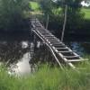 渡るのが怖いはしごの橋