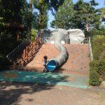 娘がハマったソウル動物園の滑り台